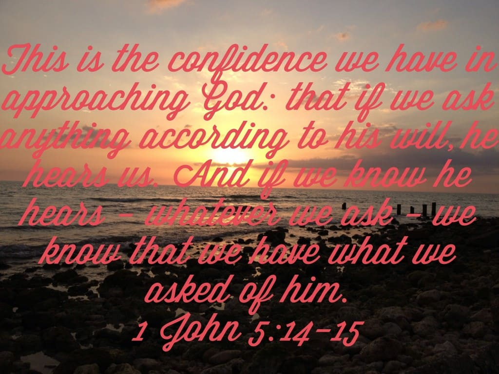Verse of the Week – 1 John 5:14-15