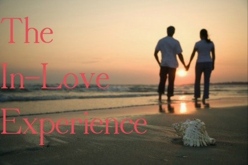 The In-Love Experience