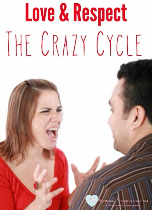 Love Respect The Crazy Cycle Crystal Storms