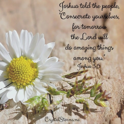 "Are you fighting the same battle? Asking if your situation will ever get better? Discouraged? Think things can't change? In Joshua 3:5, Joshua told the people, ""Consecrate yourselves for tomorrow the Lord will do amazing things among you."""
