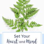 Set Your Heart and Mind Where Christ Is Seated | Christian encouragement | Christian woman | Christian living
