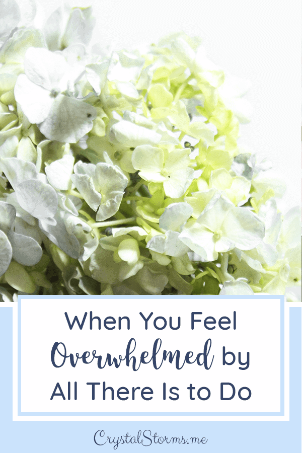 When You Feel Overwhelmed by All There Is to Do